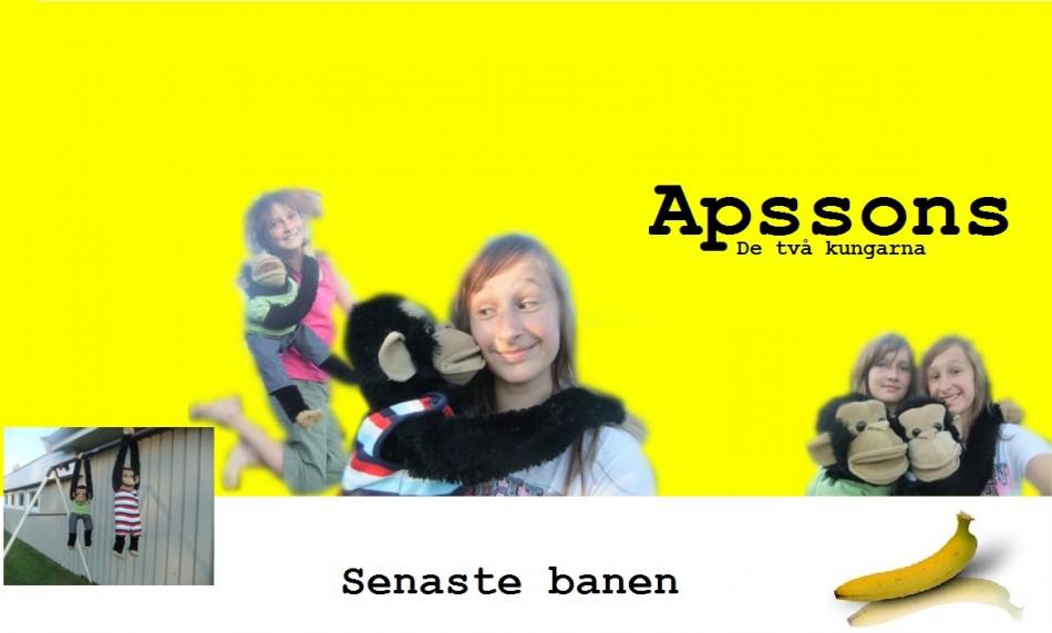 apssons-bloggen
